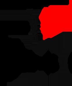 نمونه مدار ZCS
